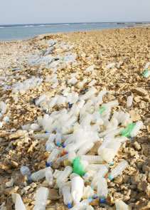 Plastic bottles washed up on the beach