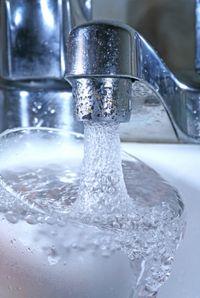 Fresh tap water